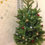 もみの木のクリスマスツリーとドライの枝でクリスマス飾り